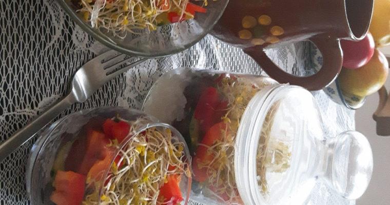 Sałatka warstwowa z rzodkwią i fasolą