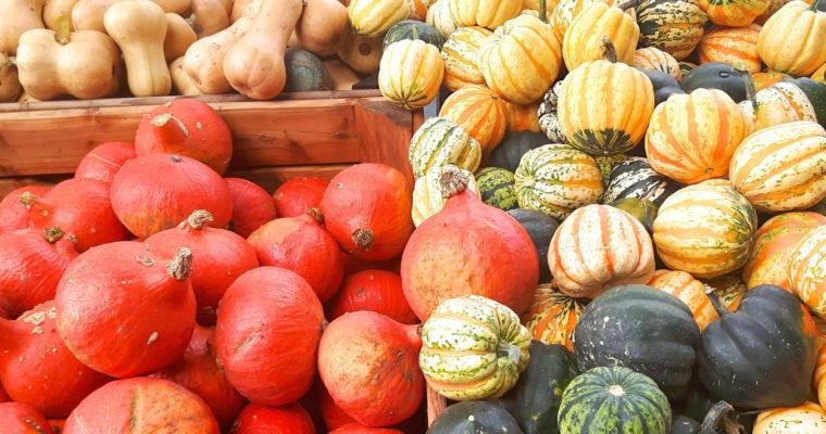 Jesień – jak jeść bardziej sezonowo jesienią