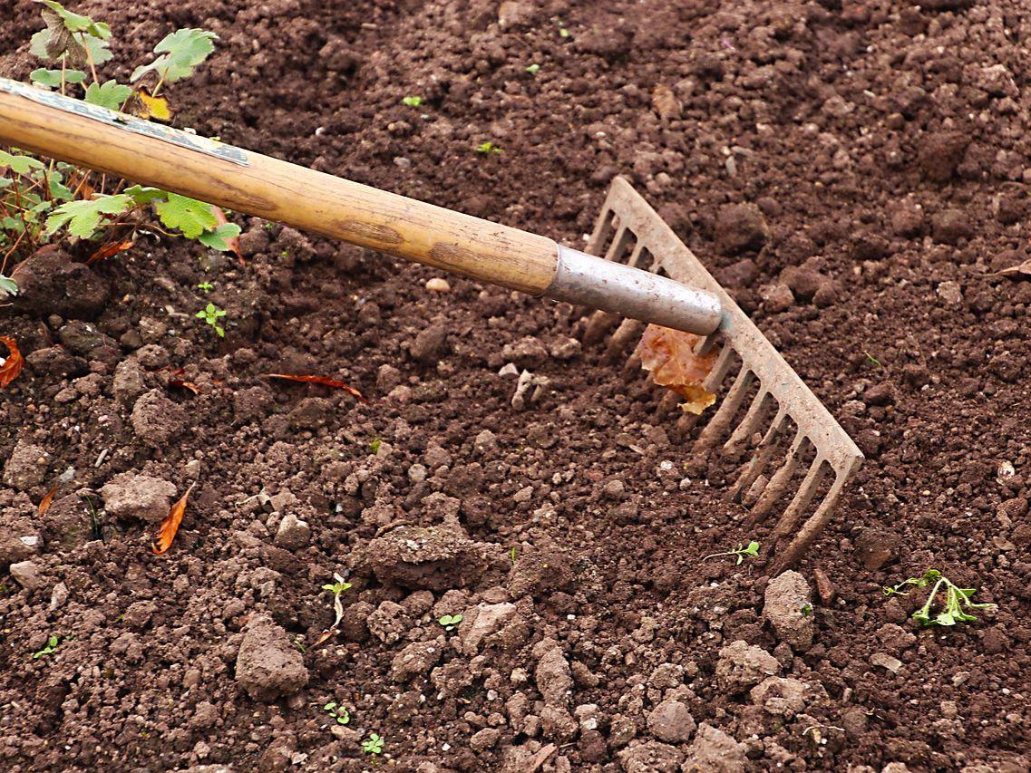 Kompostowanie a miejskie ogrodnictwo