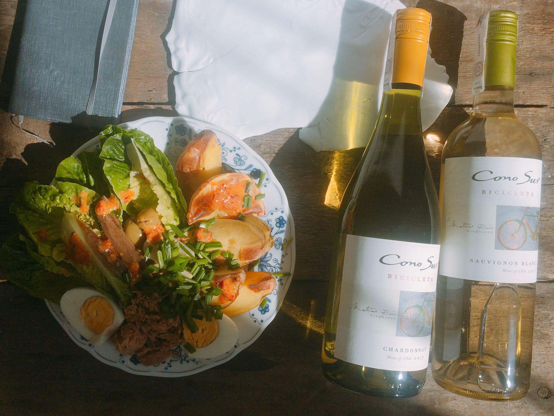 Odmiany winorośli – wszystkie smaki i szczepy wina