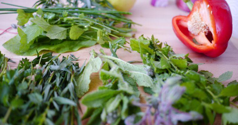 Jak uprawiać zioła naparapecie?